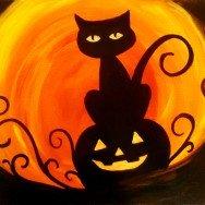 Jack-O-Lantern Cat